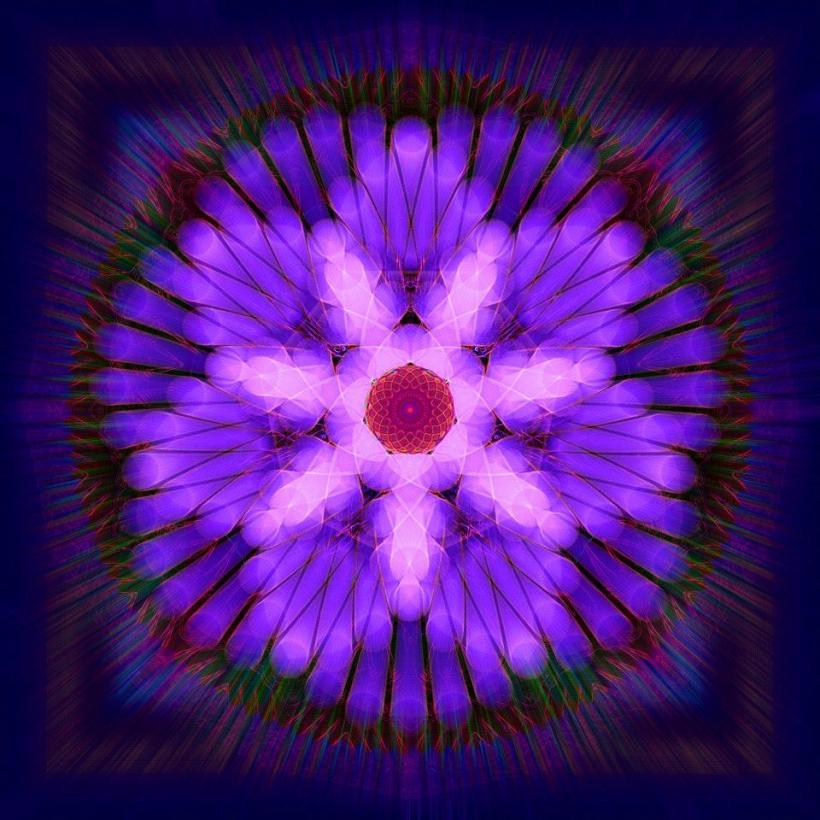 digital flower1