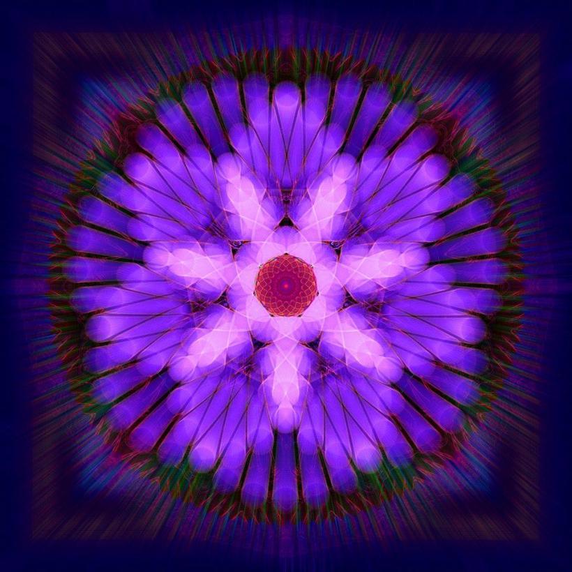 digital flower1
