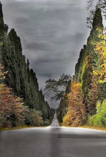 road beyond