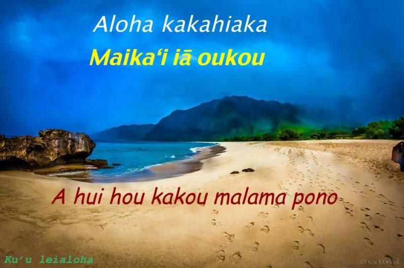 aloha sunday3