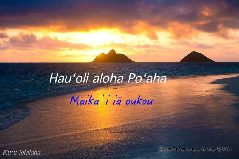 aloha thurs