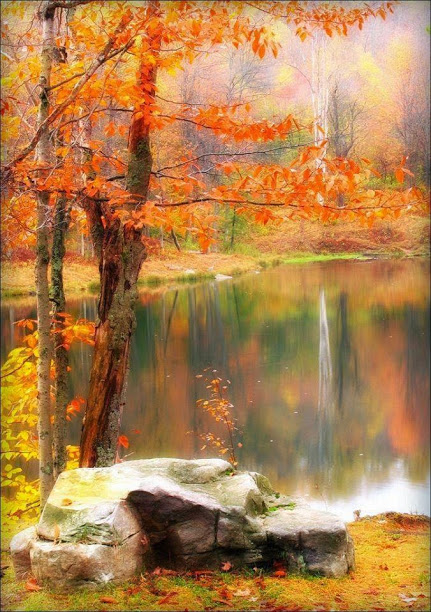 autumn moment
