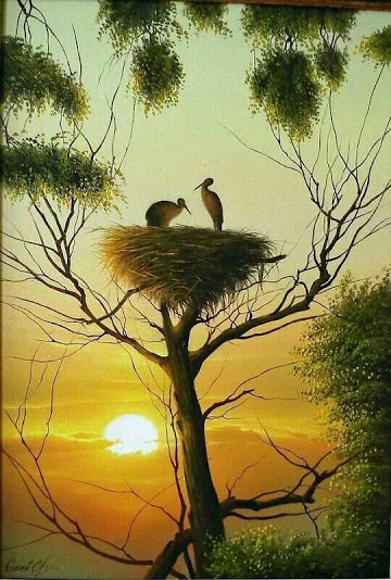skyview cranes nest