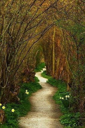 path to secret garden