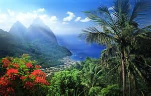 hawaii hillside banner