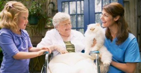 Animal-Assisted-Therapy
