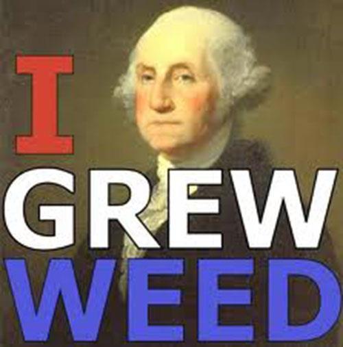 I_Grew_Weed