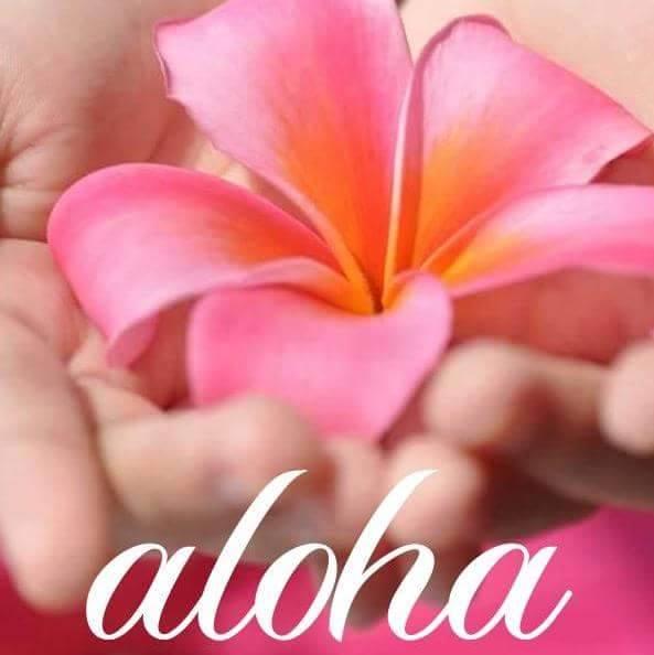 aloha_plumeria pink macro