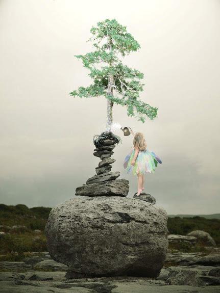 helping tree grow