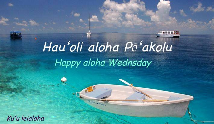 aloha_wednesday3
