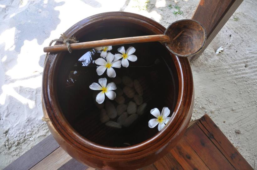 beach_wash_bowl_with_plumeria_flowers-1547826