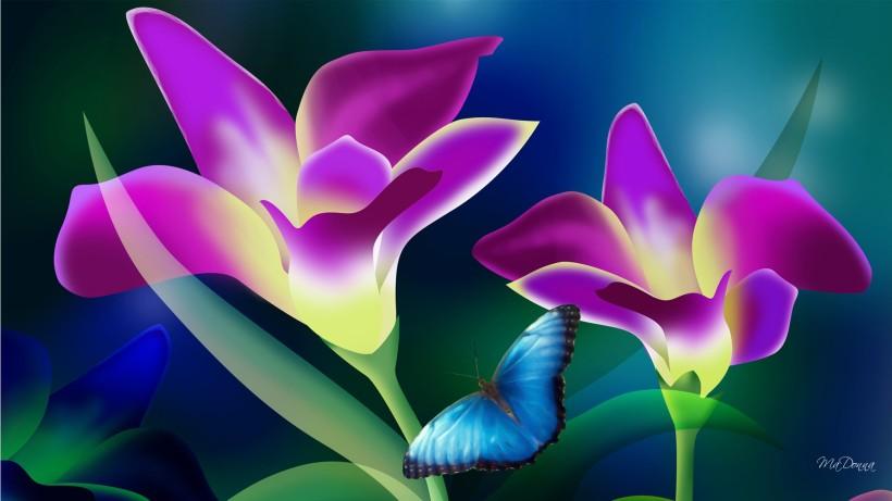 Tropical-Flower-High-Quality-HD-Wallpaper-Desktop