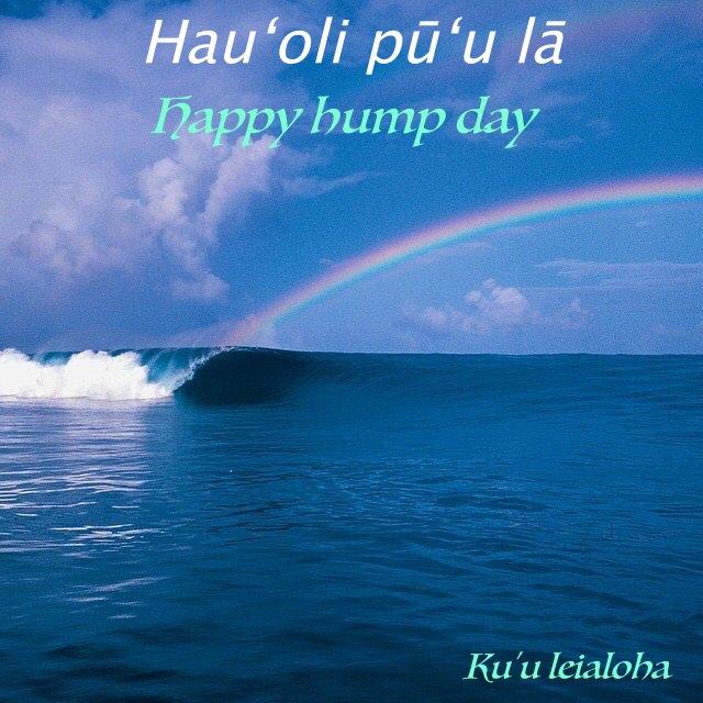 aloha_hump day