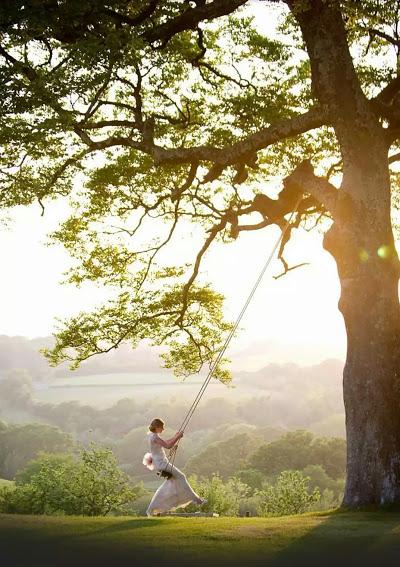 relax_tree_swing