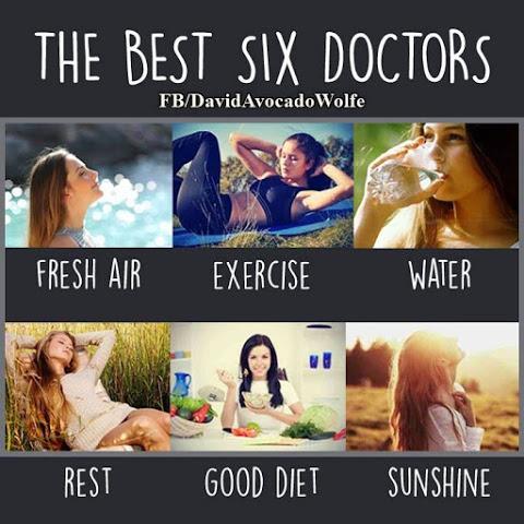 6 doctors of health