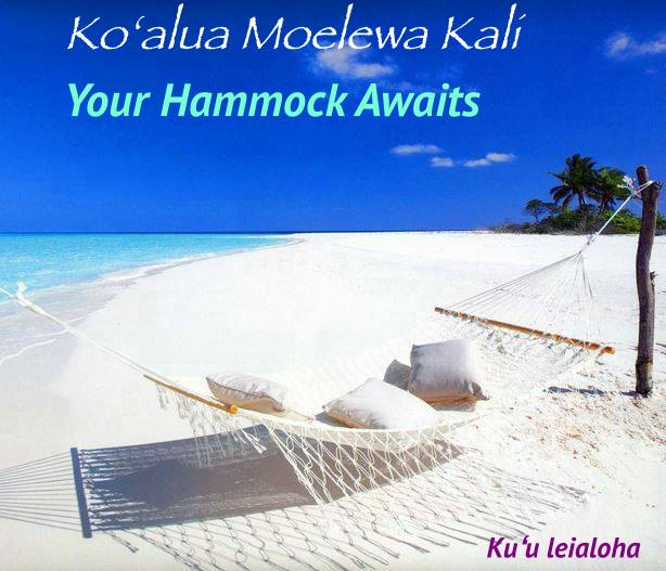 aloha_hammock