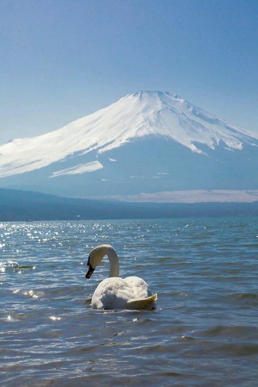 Swan-Mountain