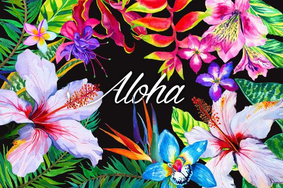 aloha_flowers
