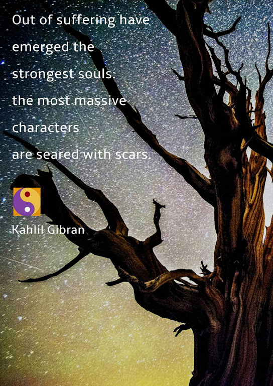scars-2