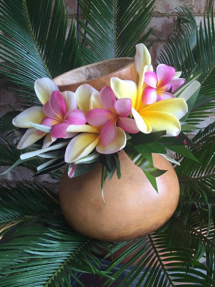 aloha-ipu
