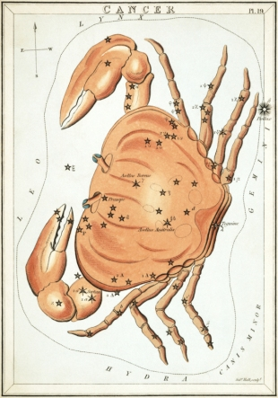 Cancer North Node Astrology Tara Greene