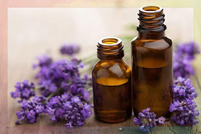 lavender dilution