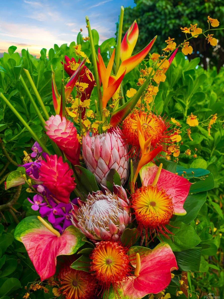 Tropical flowers - Asia Visions Photography Canvas