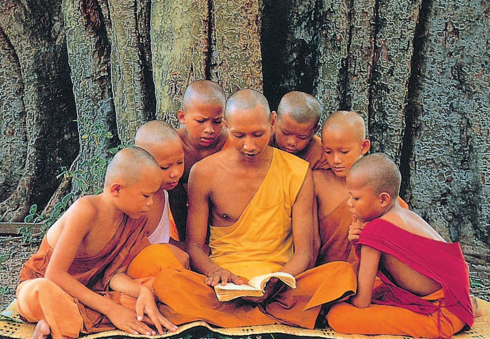 The Tree of Life: The 'Modern' Buddhists